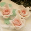 Lektion 08 - Rosen modellieren